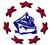 Danube Star Shipping Logo